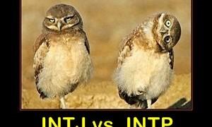 MyersBriggs-owls-social-media