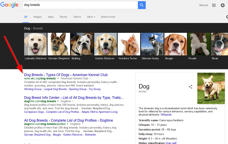 dog-breeds-on-google-serps