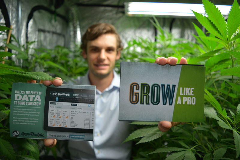 david_standard_grow_buddy_app_software_cannabis_marijuana_grow_giy_tips_advice_interview_entrepreneur_cashinbis_4